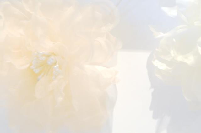 Fleurs Blanches - Pop Up Store Etsy Lyon
