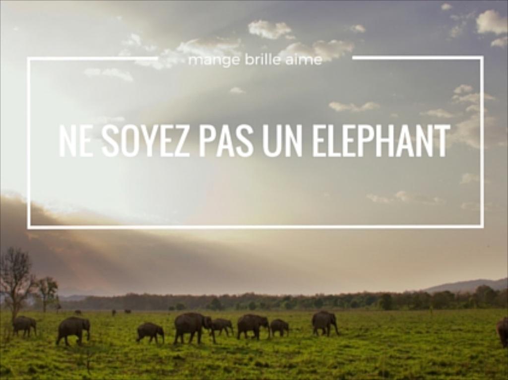 Ne soyez pas un éléphant!